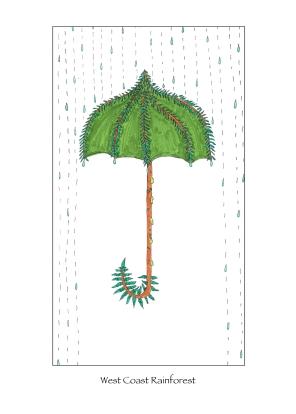 rainforest small-001